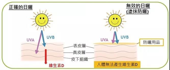 不曬太陽,真的健康嗎?缺乏維生素D,會導致什麼問題?